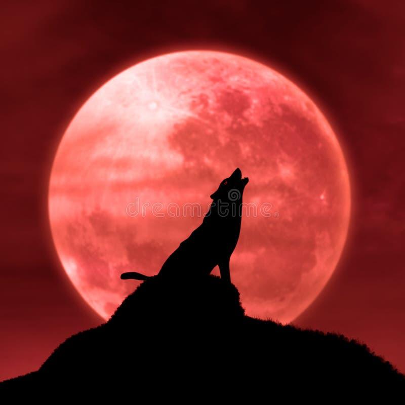 Wolf, Der Am Mond Im Mitternacht Heult Lizenzfreie Stockfotografie