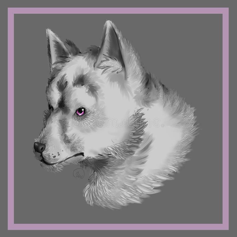 Wolf Dog imagem de stock