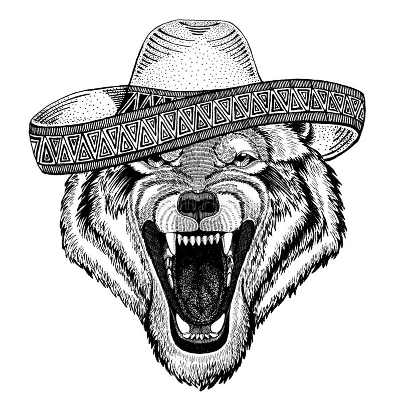 Wolf, dog wearing traditional mexican hat. Classic headdress, fiesta, party. Wolf, dog wearing traditional mexican hat. Classic headdress, fiesta party vector illustration