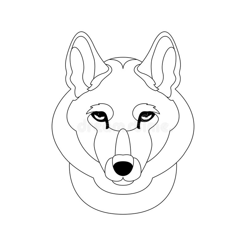 Line Drawing Wolf Face : Wolf face head vector illustration drawing stock