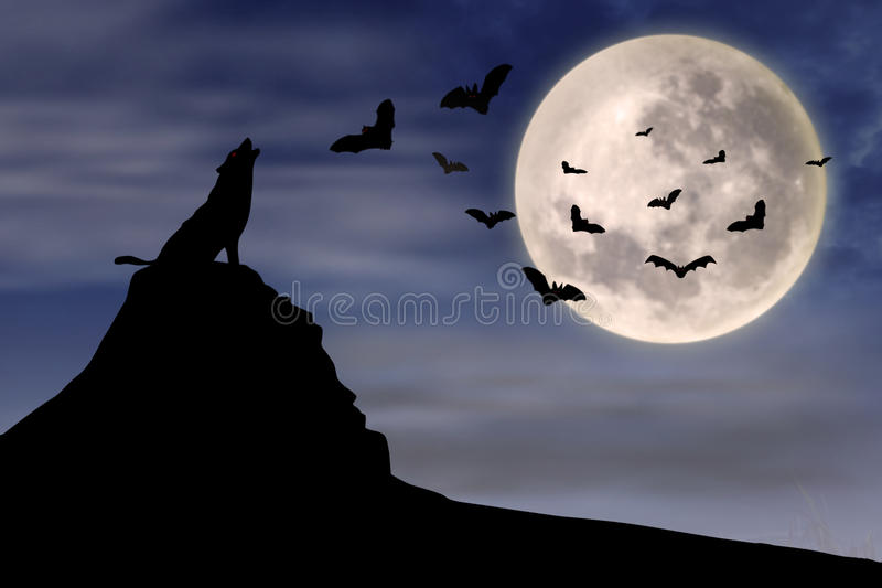 Download Wolf and flying bats stock illustration. Illustration of coyote - 26657584