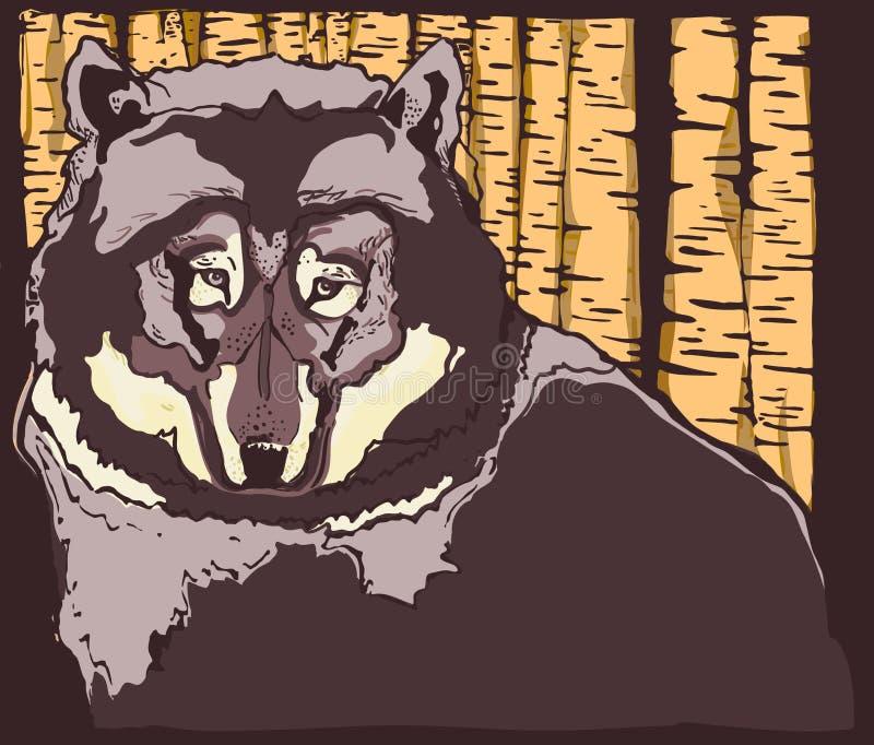 Wolf Guarding el bosque fotos de archivo