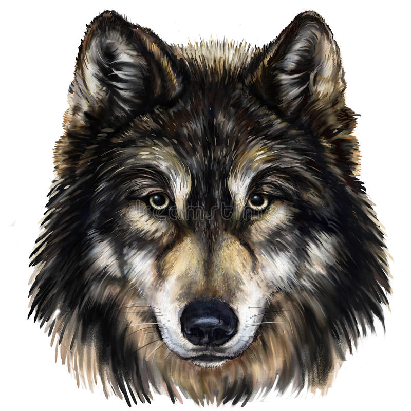 Wolf Head vektor illustrationer
