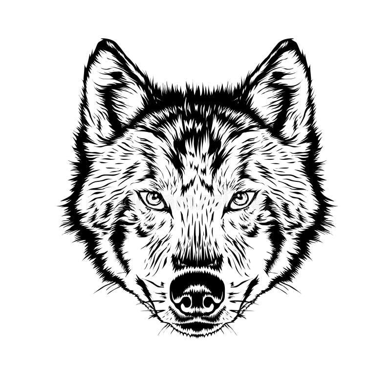 Wolf head. Beautiful wolf tattoo. Wild wolf logo stock. Wolf head illustrations stocks royalty free illustration
