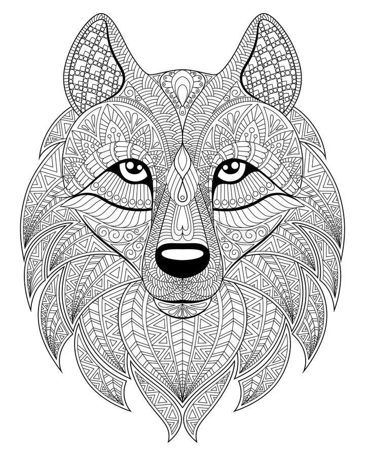 Wolf Head In Zentangle Style Adult Antistress Coloring Page Stock