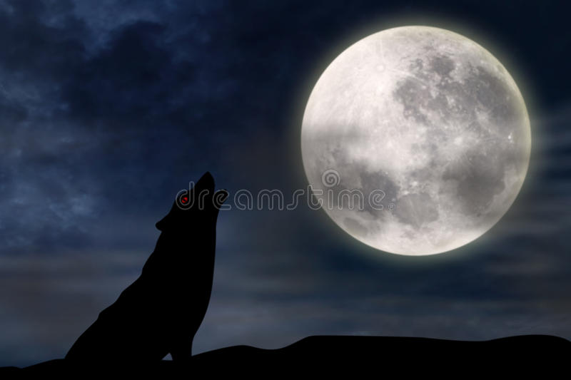 Wolf howling at full moon. Vector silhouette illustration of wild wolf howling against the sky with full moon rising behind stock illustration