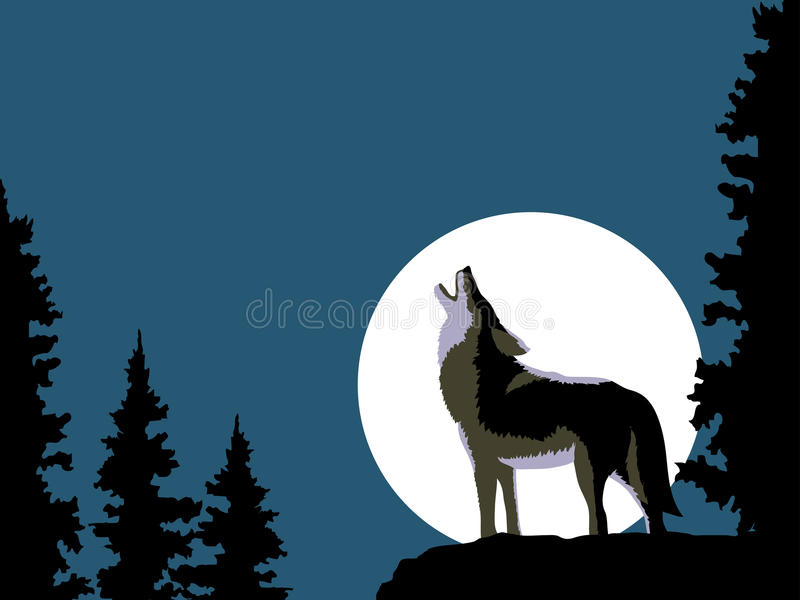 Wolf howling at the moon royalty free stock photography