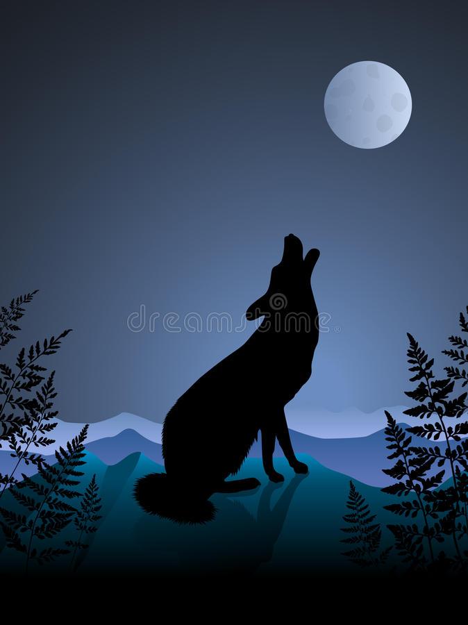 Download Wolf Howling At The Moon On Night Background Stock Images - Image: 12134014