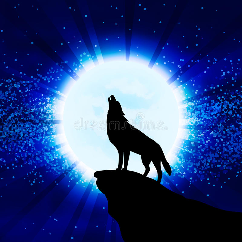 Wolf howling at the moon. Vector illustration vector illustration
