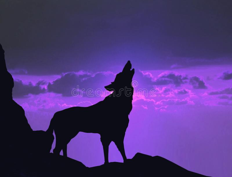 Wolf howling on a mountain cliff. Image wolf howling on a mountain cliff stock photo