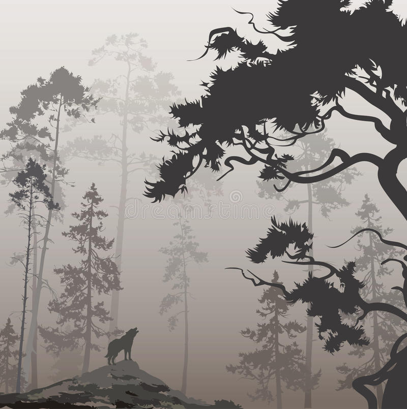 Wolf i skogen stock illustrationer
