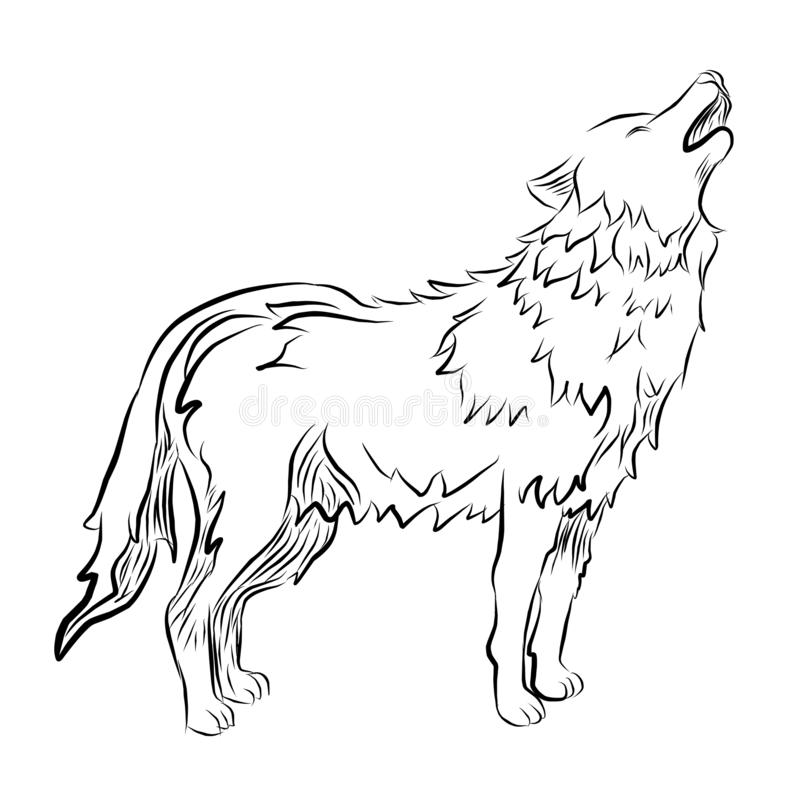 Hand drawn wolf icon. line art drawn, Engraved vector illustration of zoo animal royalty free illustration