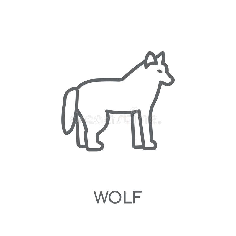 Wolf linear icon. Modern outline Wolf logo concept on white back. Ground from animals collection. Suitable for use on web apps, mobile apps and print media stock illustration
