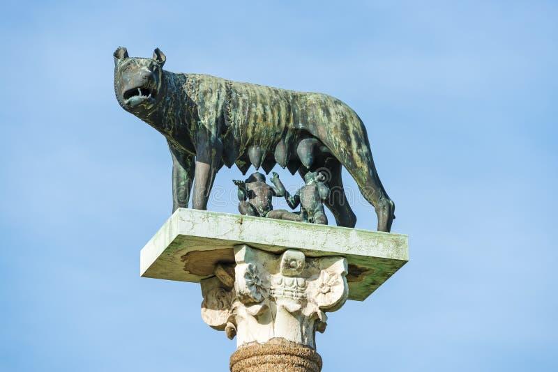 Wolf met Romulus en Remus stock foto