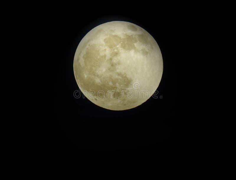 Wolf Moon / Full Moon come visto il 10 gennaio 2020 fotografie stock libere da diritti