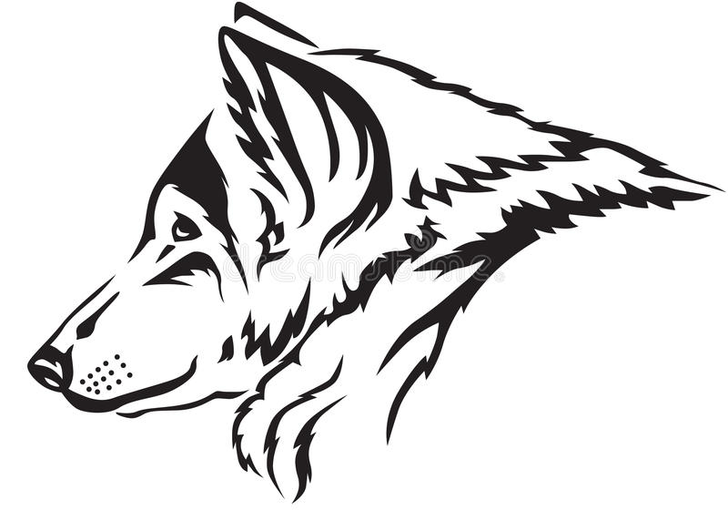 Wolf muzzle. The contour image of the wolf's muzzle royalty free illustration