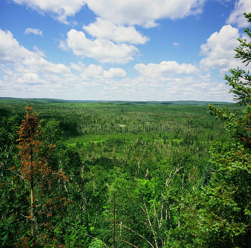 Wolf Ridge Overlook - le Minnesota photos libres de droits