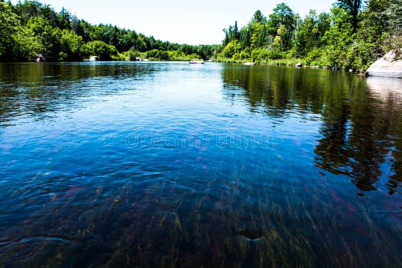 Wolf River Wisconsin arkivfoto