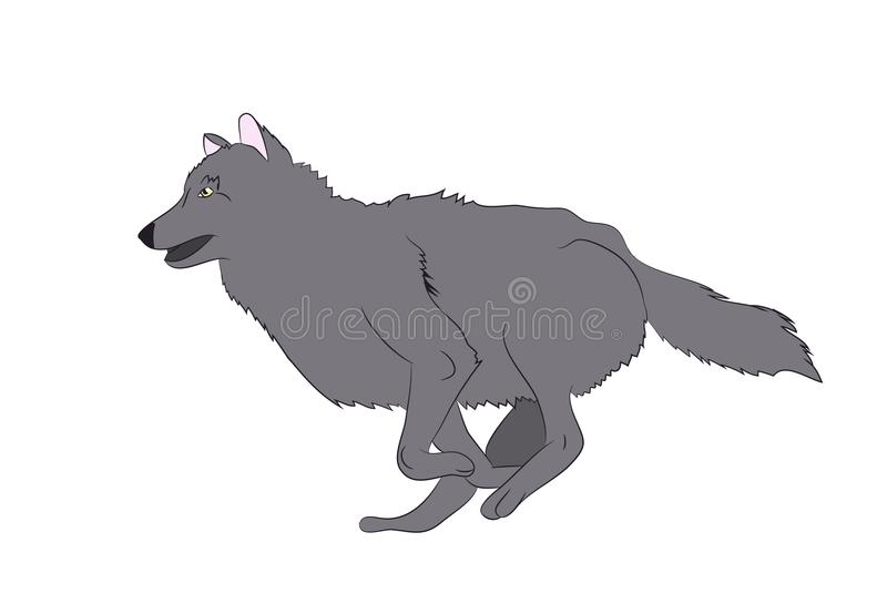 Wolf runs, image color, vector stock illustration