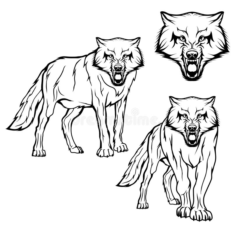 Wolf set. Vector sketch of a wolf. Business sign logotype wolf face. Sketch of a tattoo wolf. Forest predatory beast dangerous wolf stock illustration