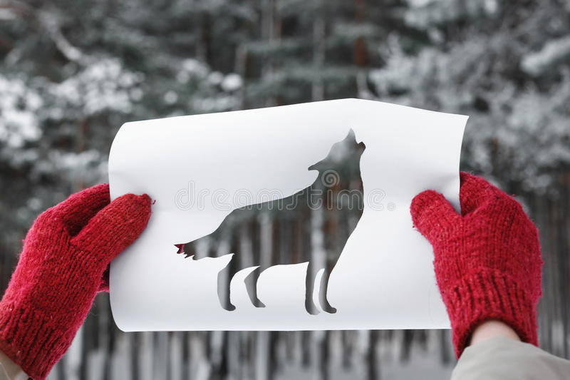 Wolf Shape Cut Out from Y Paper against Winter Forest. Concept of Taiga Dwellers. Winter Forest Through Wolf Shape Cut Out from Paper. Concept of Forest Dwellers royalty free stock photo
