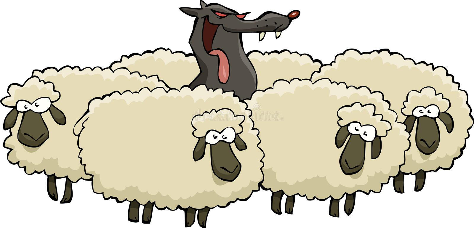 Wolf and sheep. A wolf in sheep herd vector