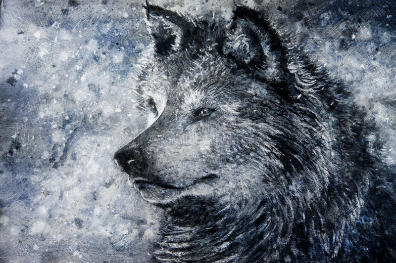 Wolf in snowy background royalty free stock images