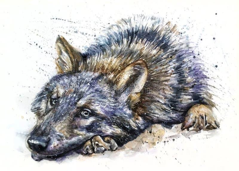 Wolfaquarell, das Raubtiere wild und frei malt lizenzfreie stockbilder