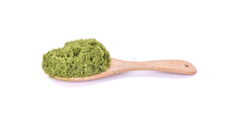 Wolffia globosa lub świeżej wody alga, Wodny posiłek, bagno algi dalej zdjęcie royalty free