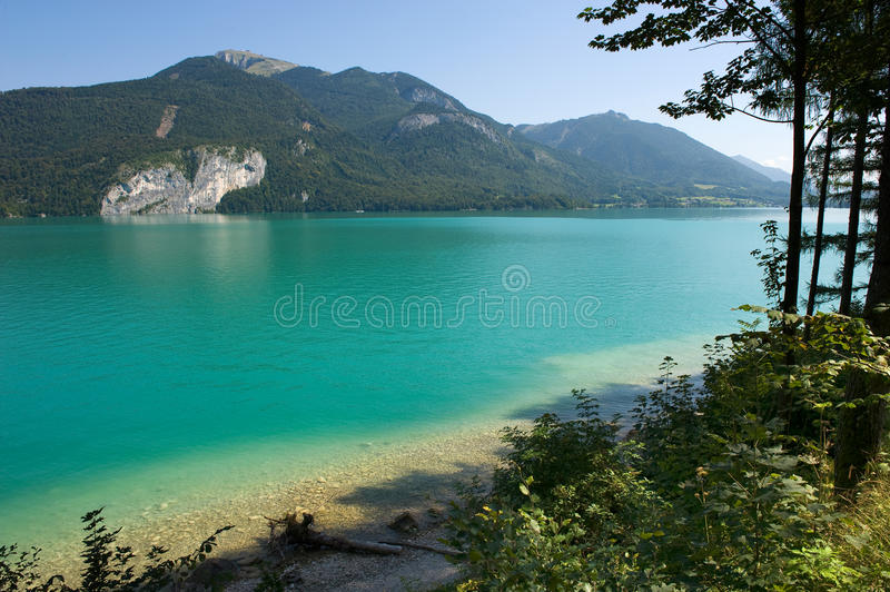 Wolfgangsee in Austria. The clear and turquise water in the Wolfgangsee in Austia stock images