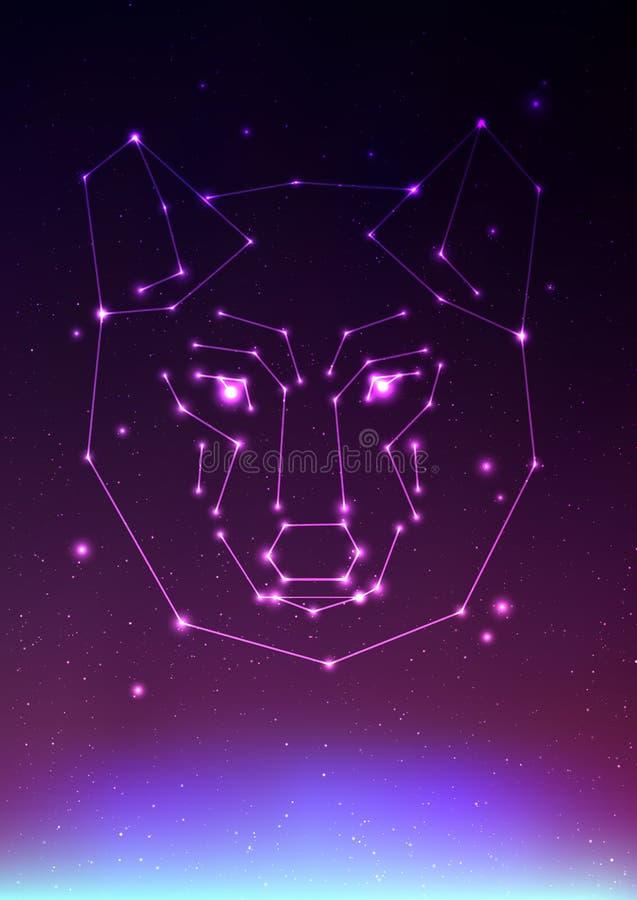Wolfkonstellations-Vektorillustration Gesicht eines Wolfs in den Konstellationen und im Stern auf Kosmos mit Nordlichtern wolfs lizenzfreie abbildung