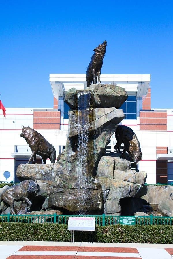 Wolfpack statua przy carter-finley stadium, Cary, Pólnocna Karolina zdjęcia stock