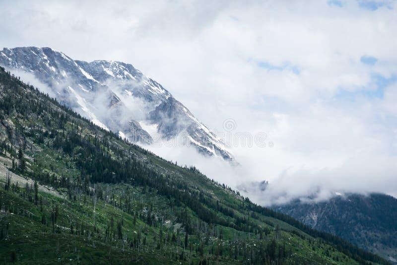 Wolk in de bergen bij Gletsjer nationaal park stock foto's