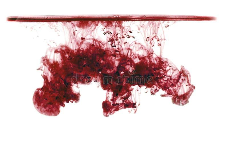 Wolk van inkt onder water op witte achtergrond wordt geïsoleerd die Rode inkt in water met waterlijn, inktdaling stock foto's