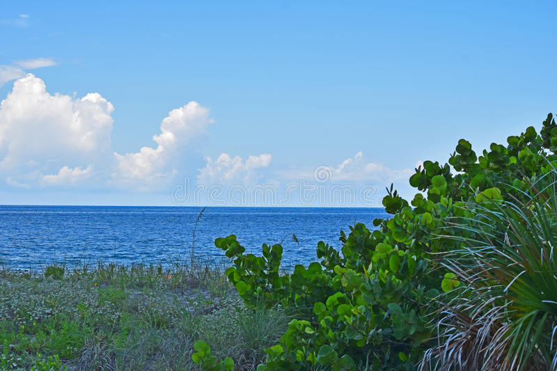 Download Wolke Im Himmel Und Im Wasser Stockfoto - Bild von nave, grün: 96934866