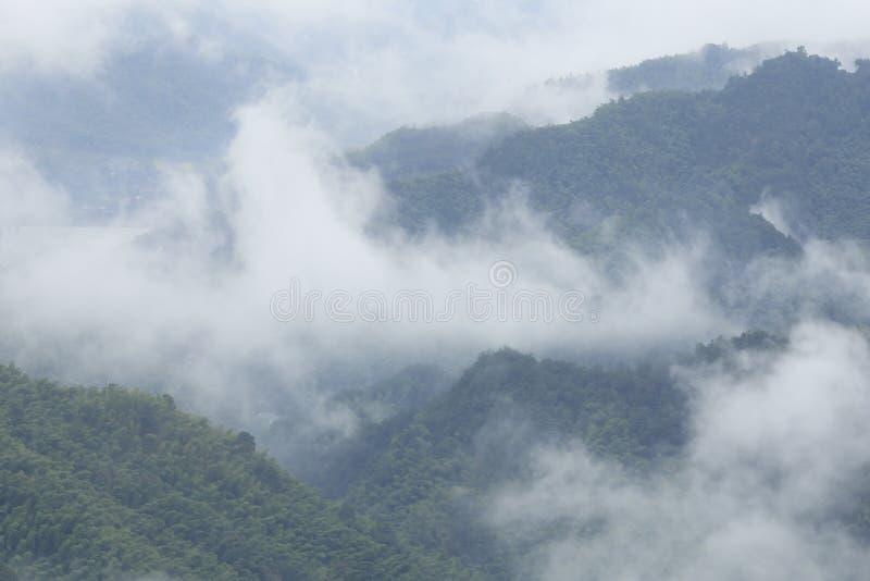 Wolke und Nebel, die vom Tal steigen stockbilder