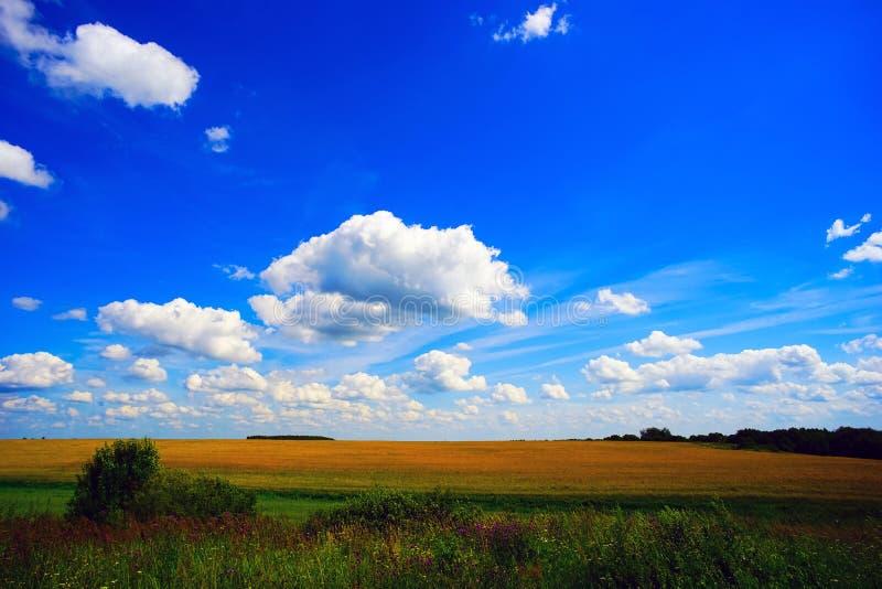Wolken über dem Feld RAUM FÜR BEDECKUNGSschlagzeile UND TEXT stockfoto