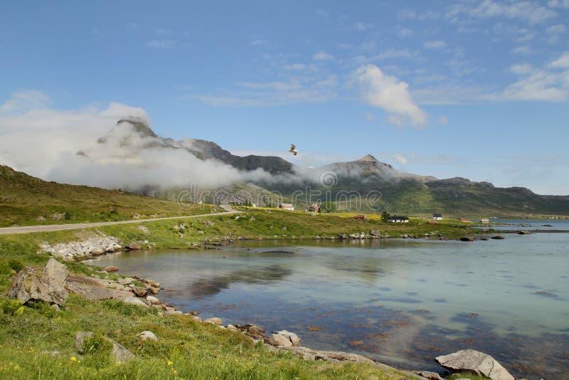 Wolken auf dem Fjord von Flakstad stockbilder
