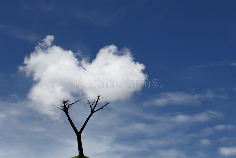 Wolken-Baum stockfotografie