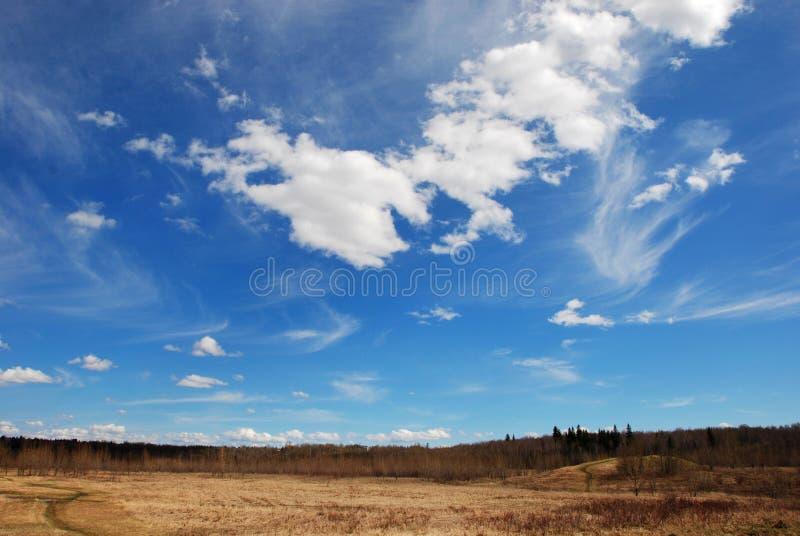 Wolken boven gras stock foto's