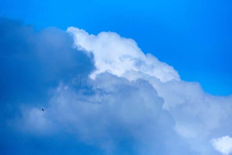 Wolken in de hemel Witte wolken, klimaatveranderingen royalty-vrije stock fotografie