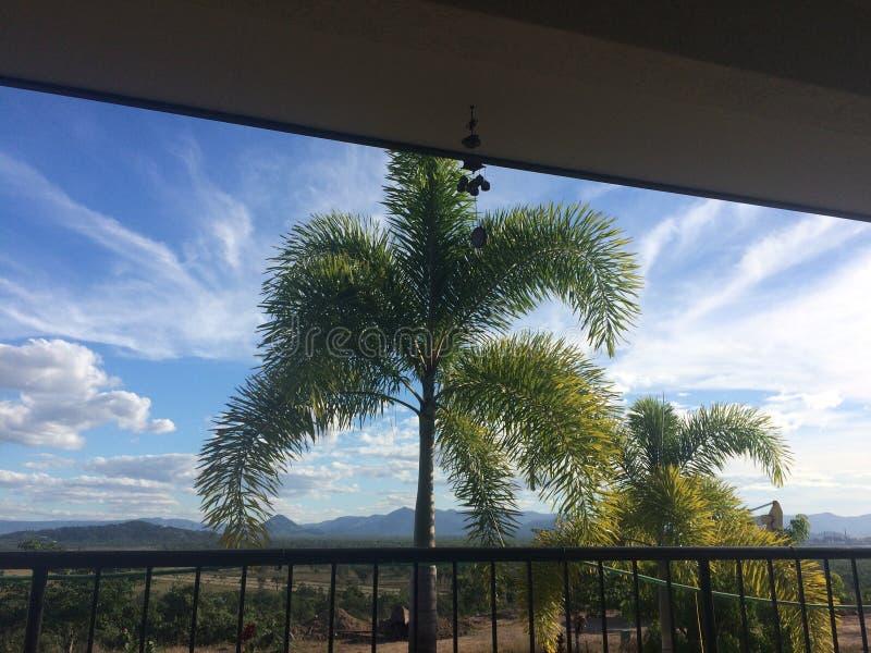 Wolken des blauen Himmels der Palme lizenzfreie stockfotografie