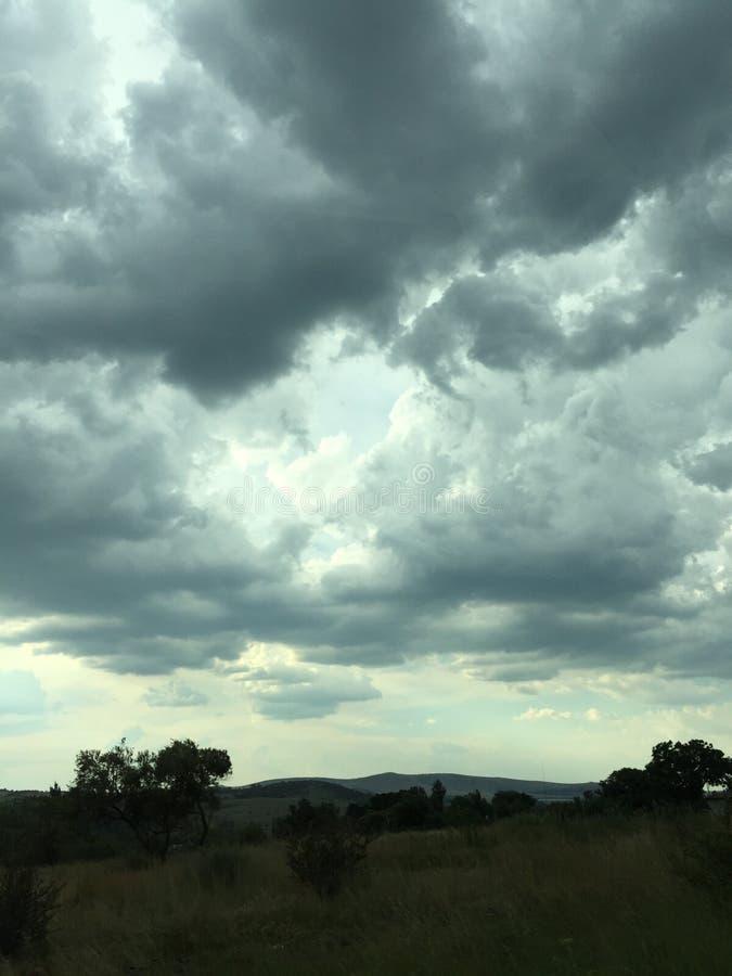 Wolken en bomen stock foto