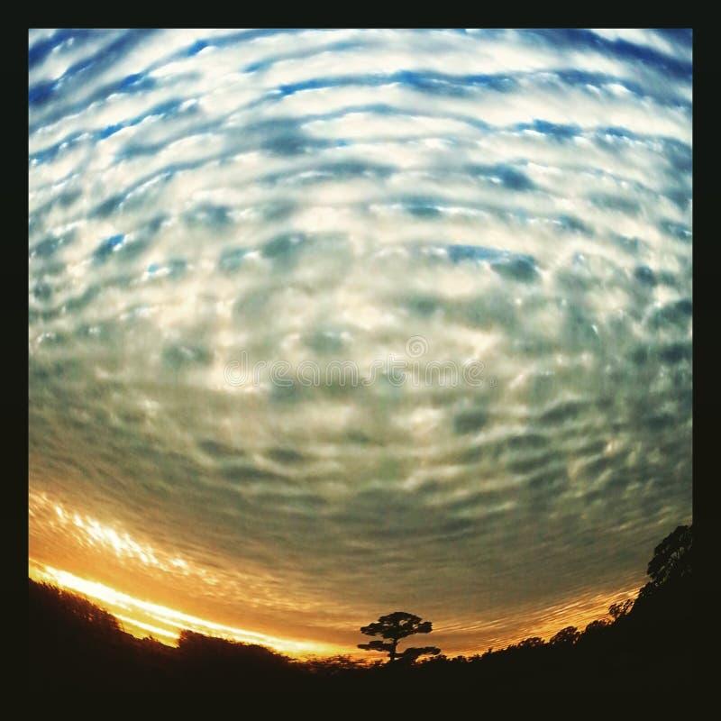 Wolken en boom royalty-vrije stock afbeeldingen
