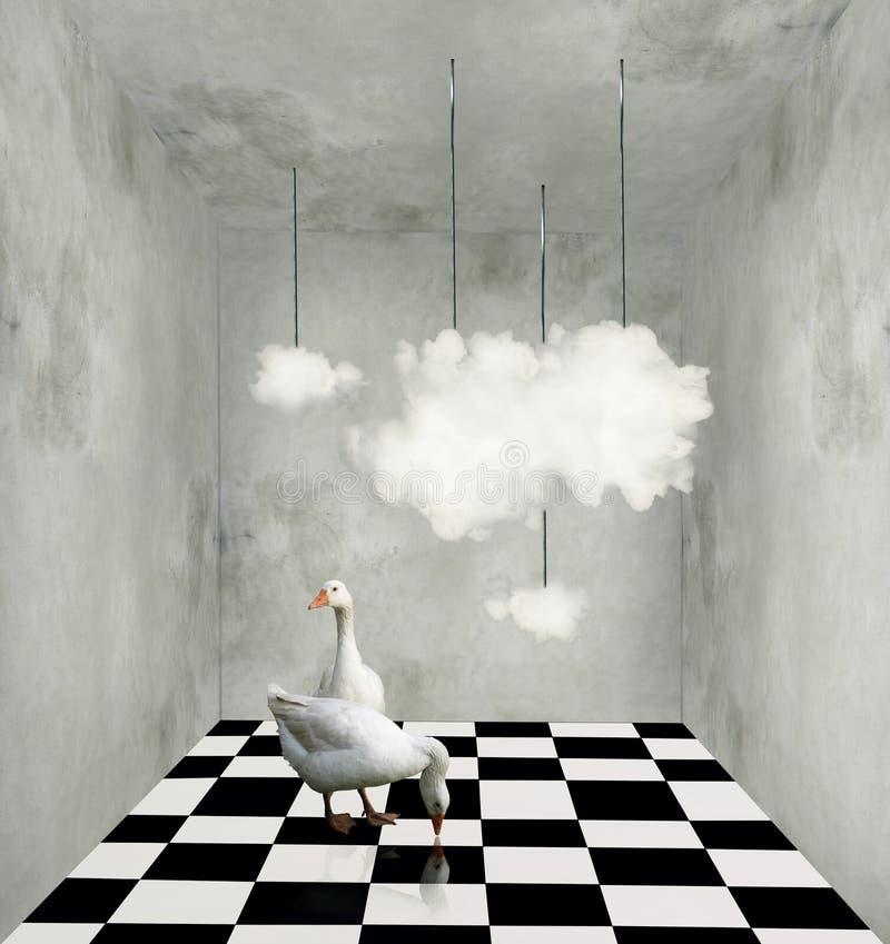 Wolken en eenden in een surreal ruimte royalty-vrije illustratie