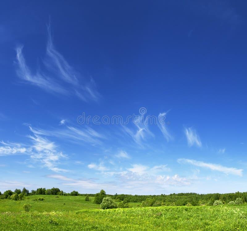 Wolken over de groene weide stock afbeeldingen
