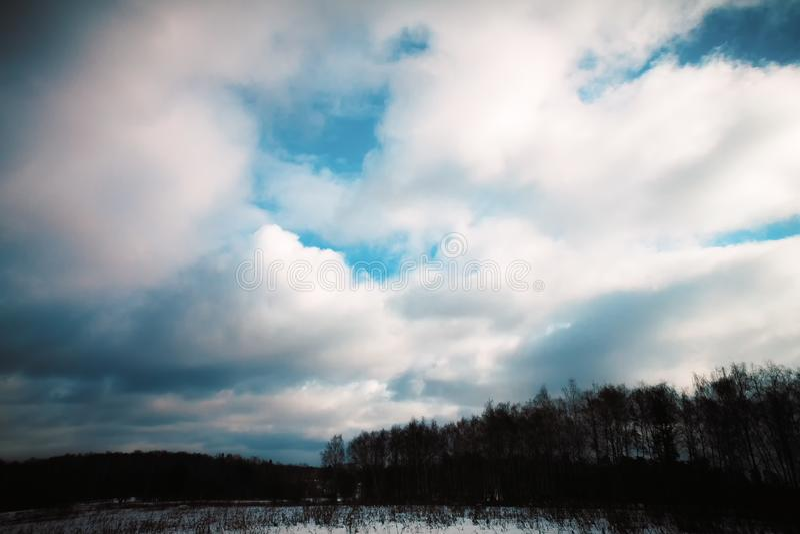 Wolken over donkere bomen royalty-vrije stock afbeeldingen