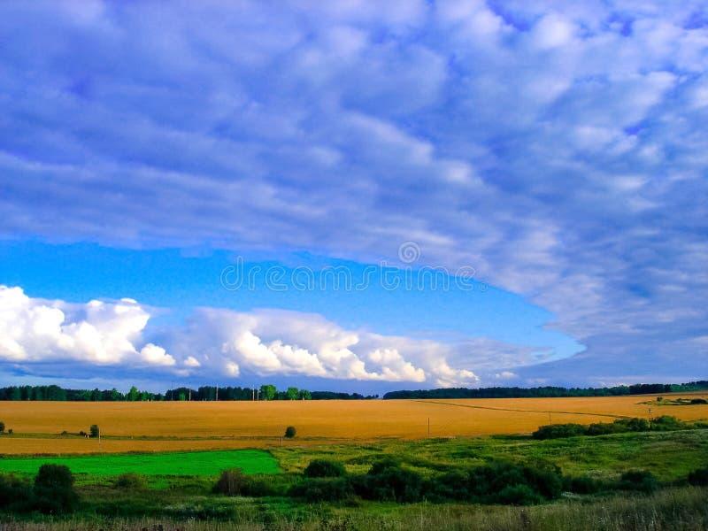 Wolken over een tarwegebied in Siberië stock afbeeldingen
