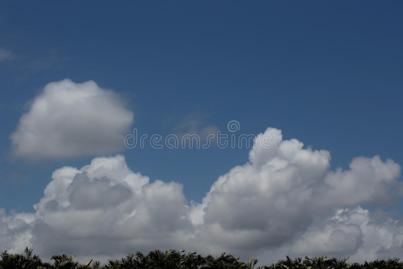 Wolken over Florida stock foto's