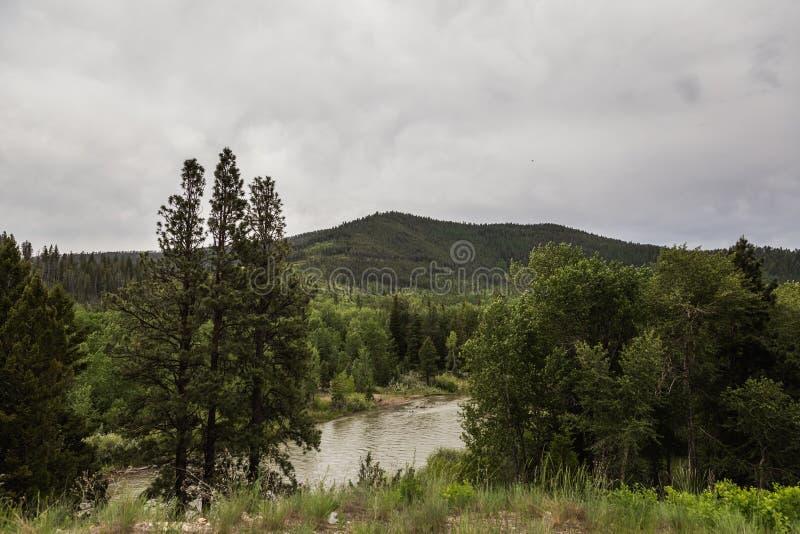 Wolken over Forest River Landscape royalty-vrije stock fotografie